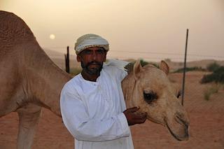 Kings camel herdsman