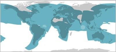 mini-VSAT V3 satellite coverage map
