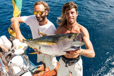 Nice 20kg Yellowfin Tuna!