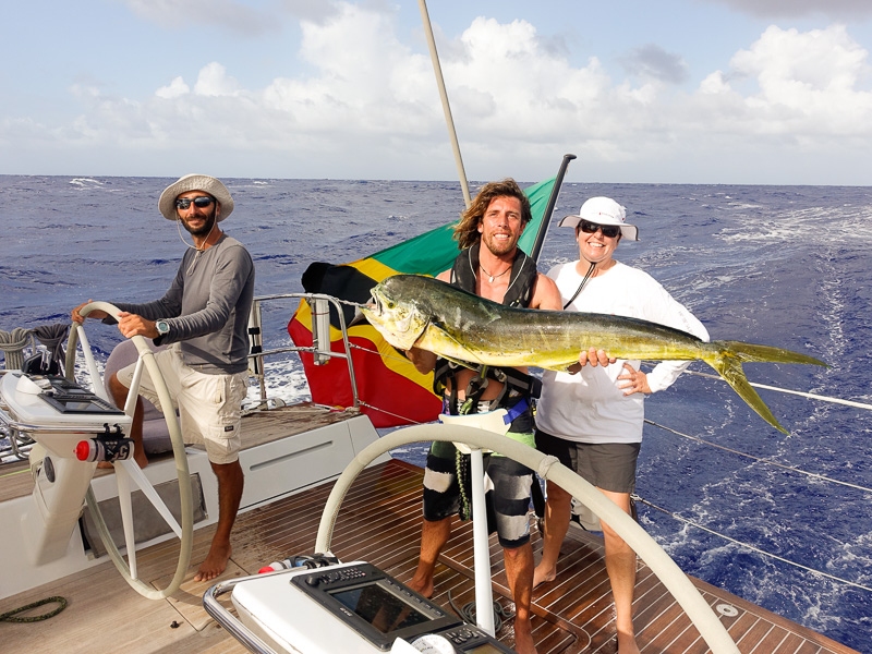 Wow! What a huge Mahi Mahi!