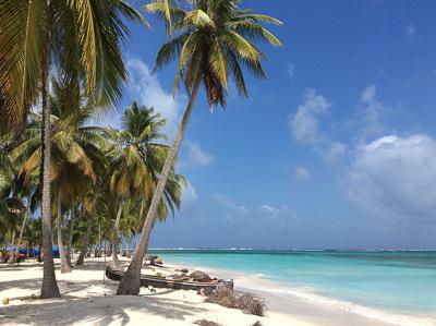 spiaggia e palme da cocco a San Blas